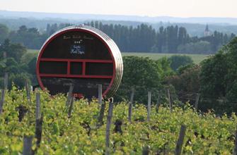 Drôle de tonneau dans les vignes du Bourgueillois!