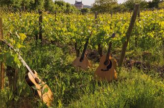 Vignes en guitare: le premier salon des vins bio à Chinon